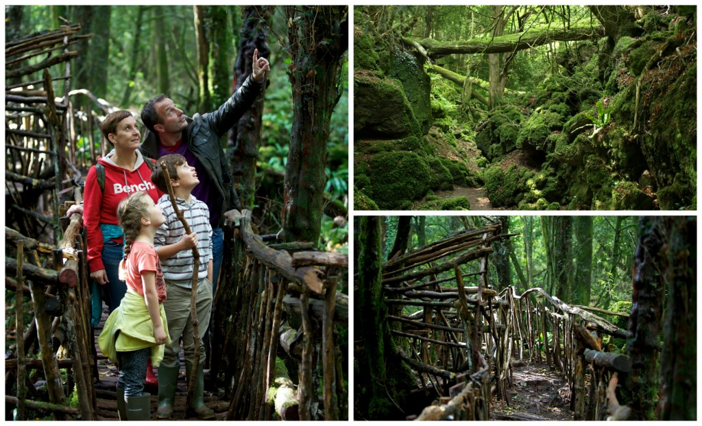 Puzzlewood Competition