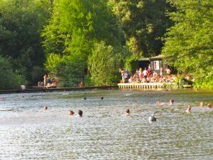 hampstead_pond